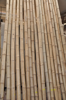 Bambusová tyč  průměr 9-10 cm, délka 3,9 metru - vzhledové vady