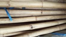Bambusová tyč 5-7 cm, délka 4 metry - vzhledové vady